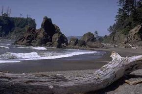 National Parks Image Gallery The park protects 57 miles of Washington's wild coast. Battered by the Pacific, the rocky shore, tiny islets, and sea stacks provide a rich habitat for a variety of sea birds and marine mammals. See more pictures of national parks.
