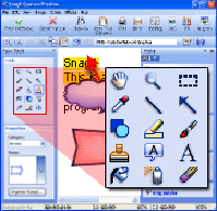 Screen capture software offers simple editing tools to make online presentations more effective.