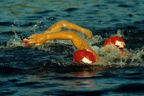 Three people swim in Lake Sammamish, Wash.