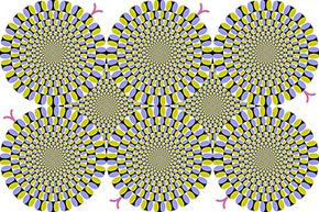 """""""Rotating snakes"""" is an optical illusion developed by Professor Akiyoshi Kitaoka in 2003 where bands of color (""""snakes"""") appear to be in perpetual motion even though the image is static."""