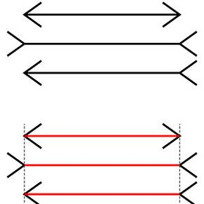 In the Müller-Lyer illusion, the lines appear to be of differing lengths (because of the direction of the arrows), even though they are all the same.
