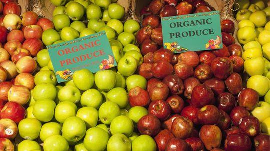 How Organic Food Works