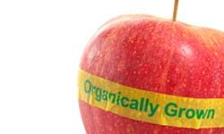 Organic food doesn't mean allergy-free.