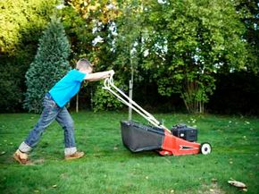 There are 21 million acres of grass lawns in the United States.