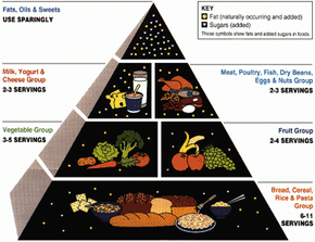 The USDA Food Guide Pyramid