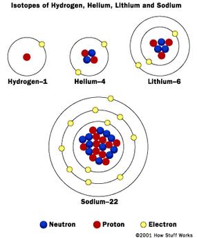 Bohr models of various atoms.