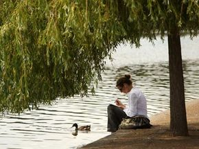A woman reads a book under the shade of a tree as she relaxes in Hyde Park in London, England. If a quick solution to global warming ever becomes necessary, some experts have suggested shading the Earth. See more green science pictures.