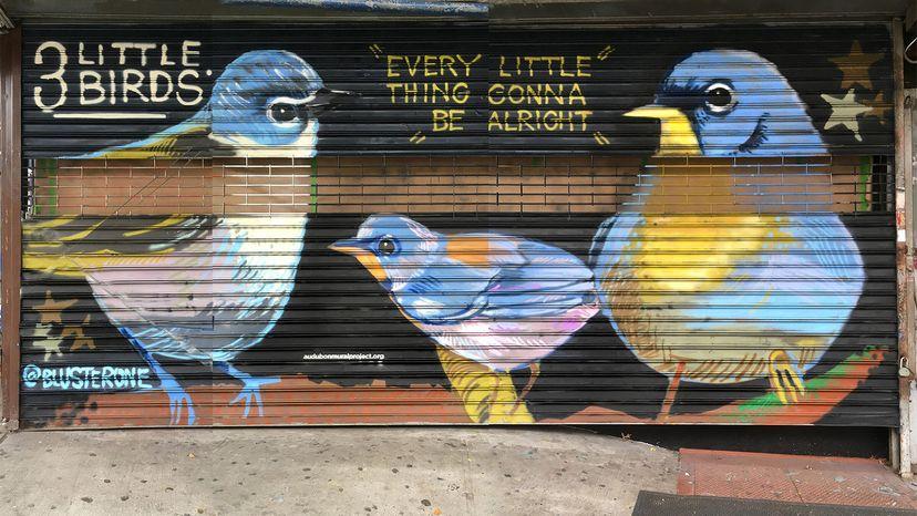 Audubon Mural Project