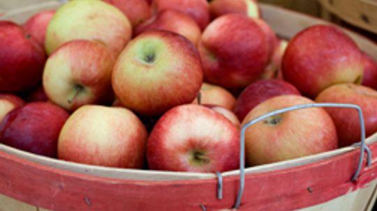 Fall Fruits Produce Guide