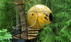 Each of the Free Spirit Spheres on Vancouver Island is supported by a web of support ropes and cables that help to stabilize it and prevent it from falling.