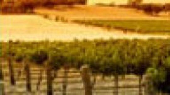 Australian Wine