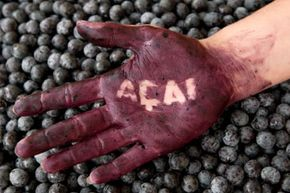 While the acai berry certainly has superfood status, its reputation as a weight-loss aid is under dispute. What do you think of these little purple berries? See more weight loss tips pictures.