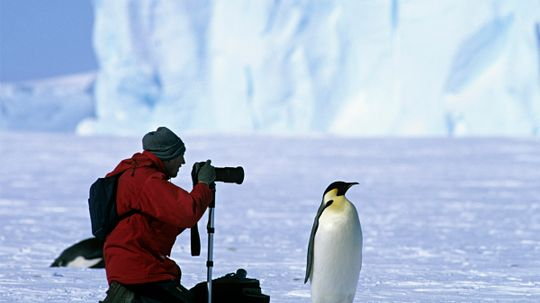 10 Jobs That Will Take You on Wild Adventures