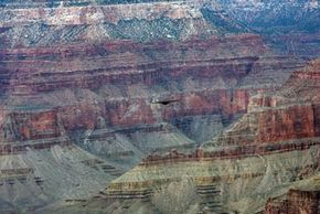 An eagle flies over the Grand Canyon in Arizona, April 5, 2007. You can see the layers of sedimentary rock