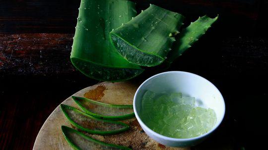 40 Amazing Uses for Aloe Vera