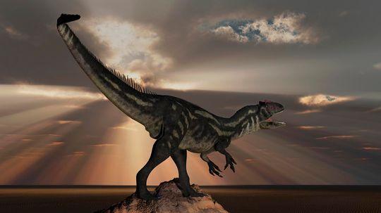 Allosaurus Was a Massive 'Flesh Grazer' and Possible Cannibal
