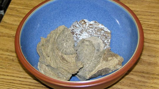 Why Is Ambergris (Whale Poop) So Valuable?
