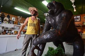 The Skunk Ape headquarters gift shop in Everglades National Park, Florida, is a low-tech affair.