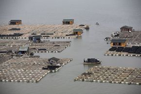 Chinese aquaculture facility