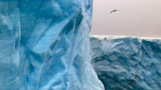 Who owns Arctic oil?