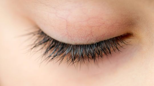 Are There Really Arachnids Living In My Eyelashes?
