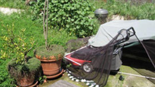 10 Backyard Landscaping Ideas on a Budget