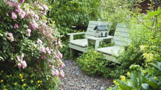 How to do Landscaping on a Budget