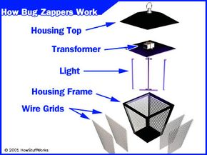 The parts of a bug zapper