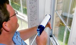 Filling in your cracks will mean less bugs sliding through.