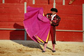 Bulls respond to the movement of the bullfighter's cape, not its color.