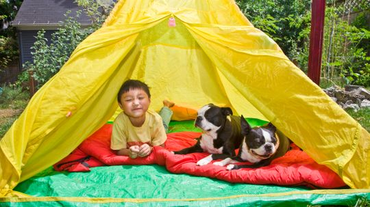 5 Ideas for Camping in the Backyard