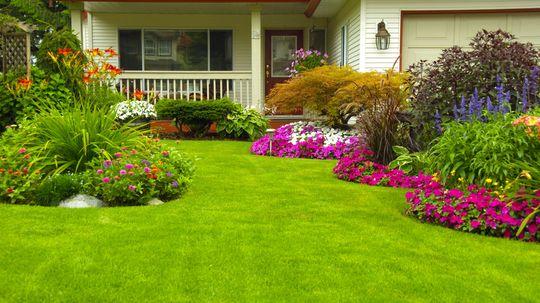 10 Everyday Backyard Hazards and How to Fix Them