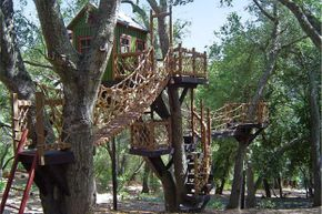 The play structure for those who prefer life amid the leaves