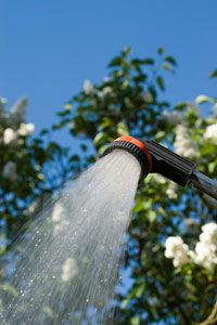 An outdoor shower is a refreshing treat on a hot day!