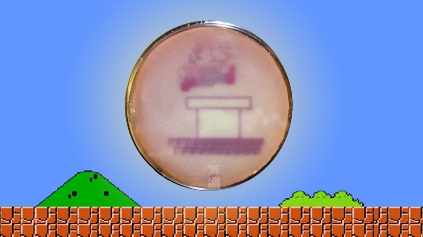 Super Mario, as drawn by E. coli bacteria. HowStuffWorks added the background.