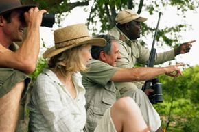 Maybe a safari is calling your name.
