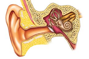 Your eardrum -- that white disc that separates the ear canal from the inner ear, will naturally try to equalize the pressure on either side of it.