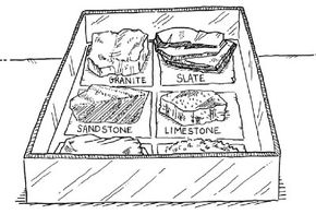 Keep your rock collection in a box and label the types of rocks.