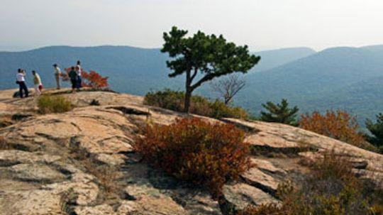 A Guide to Hiking Bear Mountain