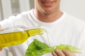 The benefits of canola oil are numerous and valuable. Click here to learn all about the benefits of canola oil. See more food pyramid pictures.