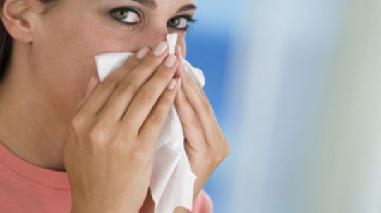 What's the best carpet for allergies?