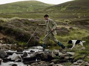 Gamekeeper Andrew Drummond crosses a stream with his springer spaniel on Drumochter Moore on the Milton Estate in Scotland.