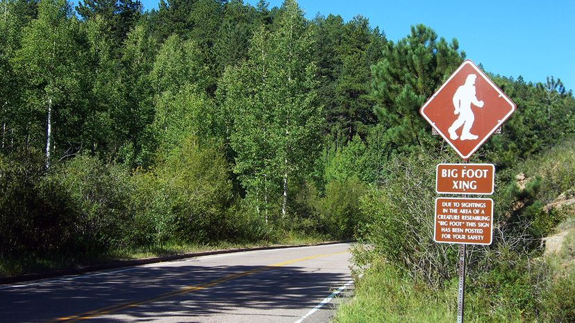A Bigfoot crossing sign on Pike's Peak Road in Colorado warns drivers of the potential for Bigfoot sightings in the area. flickr.com/JimmyEmerson, DVM.