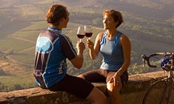 Wine country bike tours have skyrocketed in popularity over the past few years.