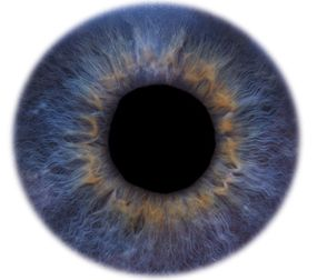 Biometrics uses unique features, like the iris of your eye, to identify you.