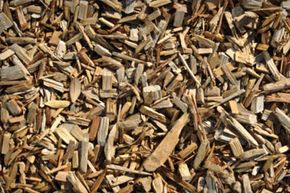 BlueFire Renewables, a green energy company based in California, broke ground on an ethanol plant in Mississippi where it expects to distill 19 million gallons of ethanol each year from wood.