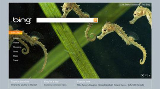 How Microsoft Bing Works