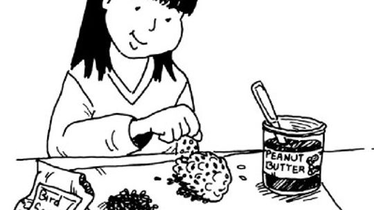 How to Make Bird Snacks