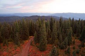 An autumn sunrise in the Clearwater National Forest and Wilderness Area, Bitterroot Mountains.