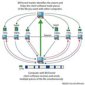 BitTorrent's peer-to-peer download process